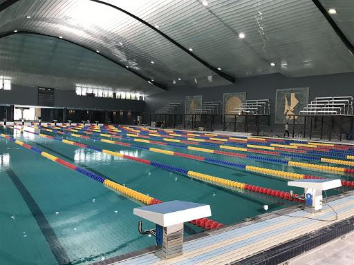 dây phao hồ bơi 50m